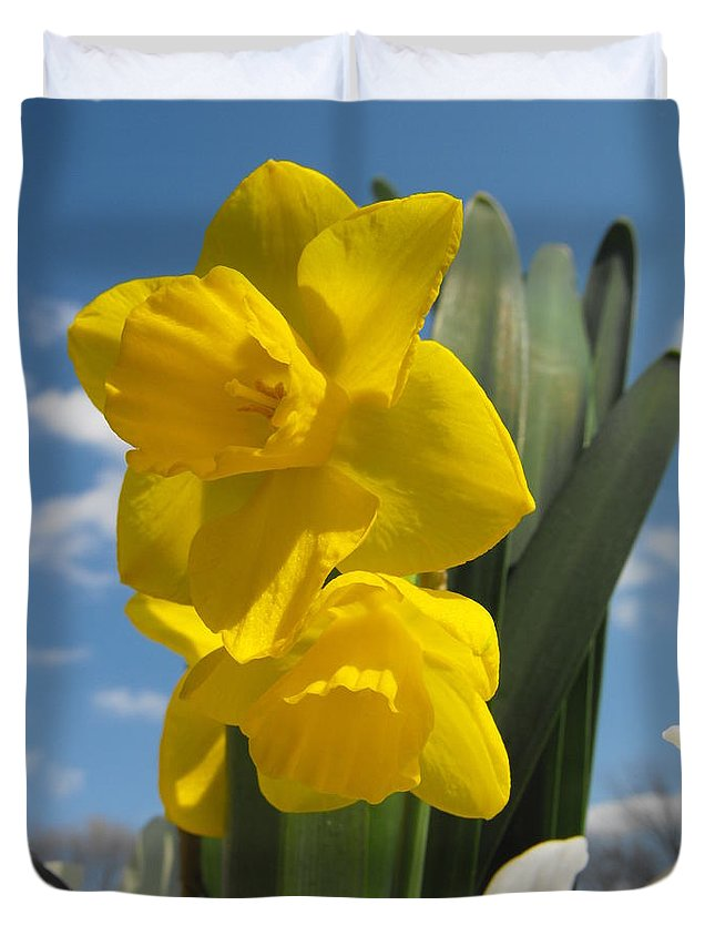 Daffodil Duvet Cover featuring the photograph Daffodills In Spring by Angela Sullivan