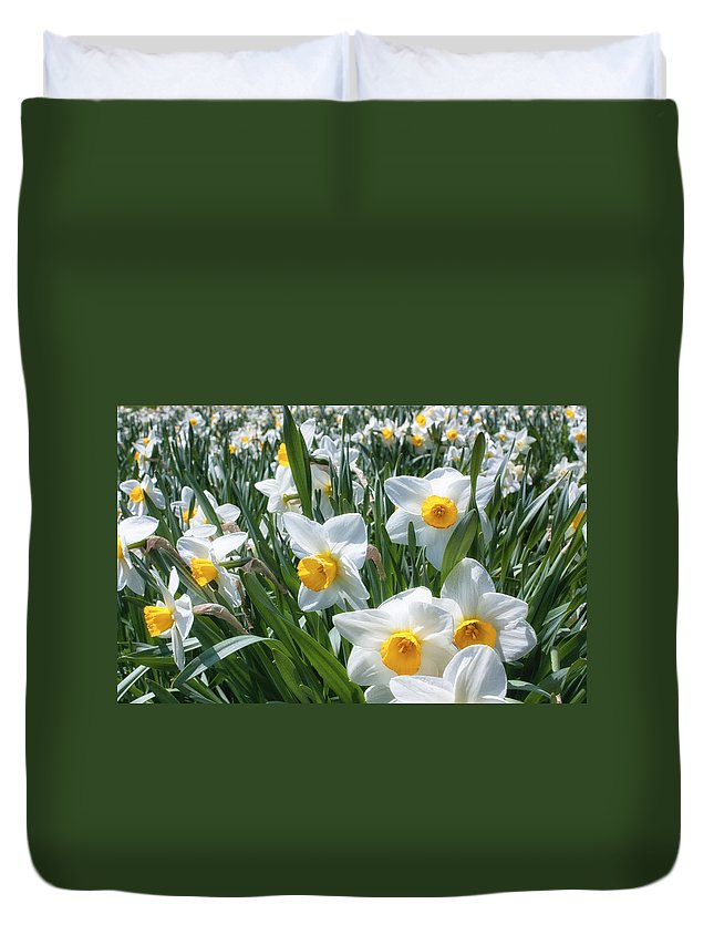 Flower Duvet Cover featuring the photograph Daffodils by Brian Caldwell