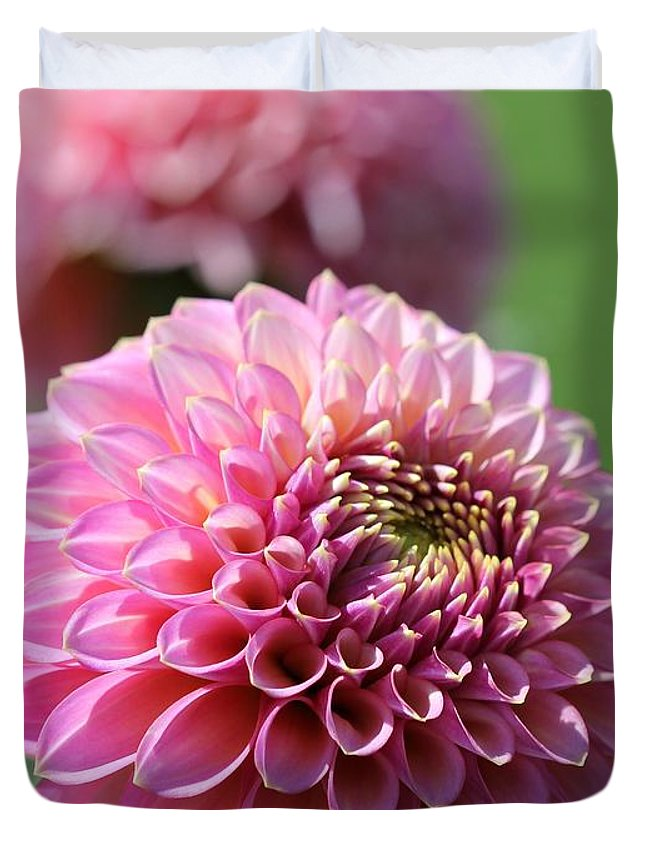 Mccombie Duvet Cover featuring the photograph Dahlia Named Skipley Spot Of Gold by J McCombie