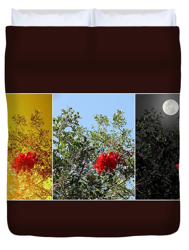 Daily Duvet Cover featuring the photograph Daily Cycle - Triptych by Carlos Vieira