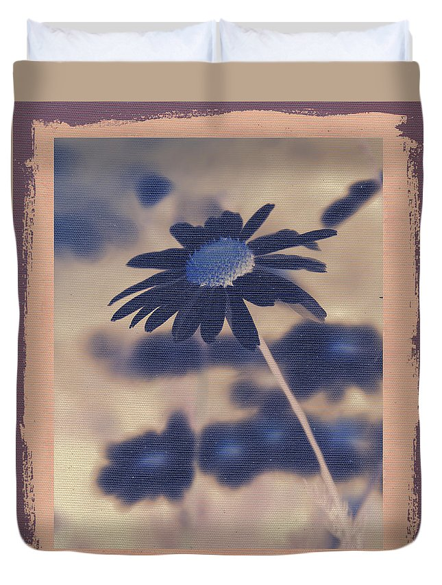 Daisies Duvet Cover featuring the photograph Daisies ... Again - 150ab by Variance Collections