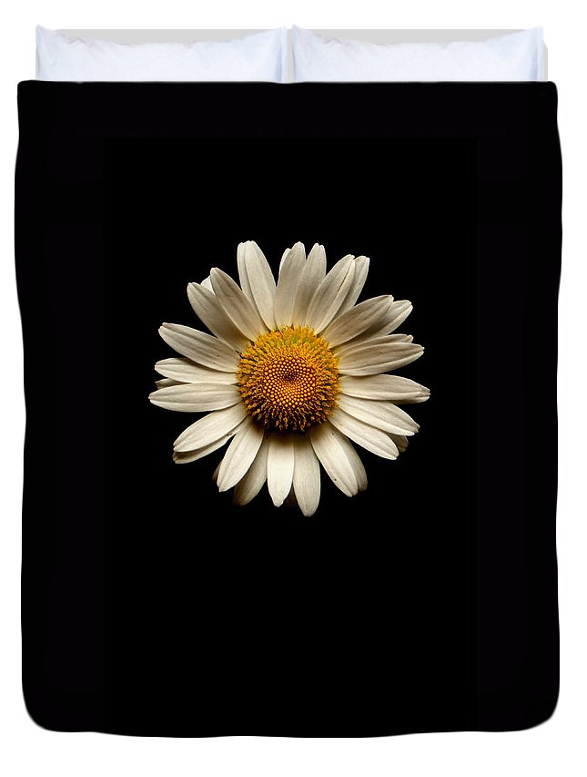 Daisies Are Not Flowers Duvet Cover featuring the photograph Daisies Are Not Flowers No Text by Weston Westmoreland