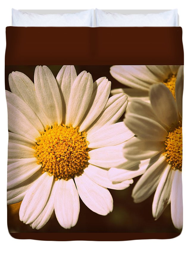 Flower Duvet Cover featuring the photograph Daisies by Chevy Fleet