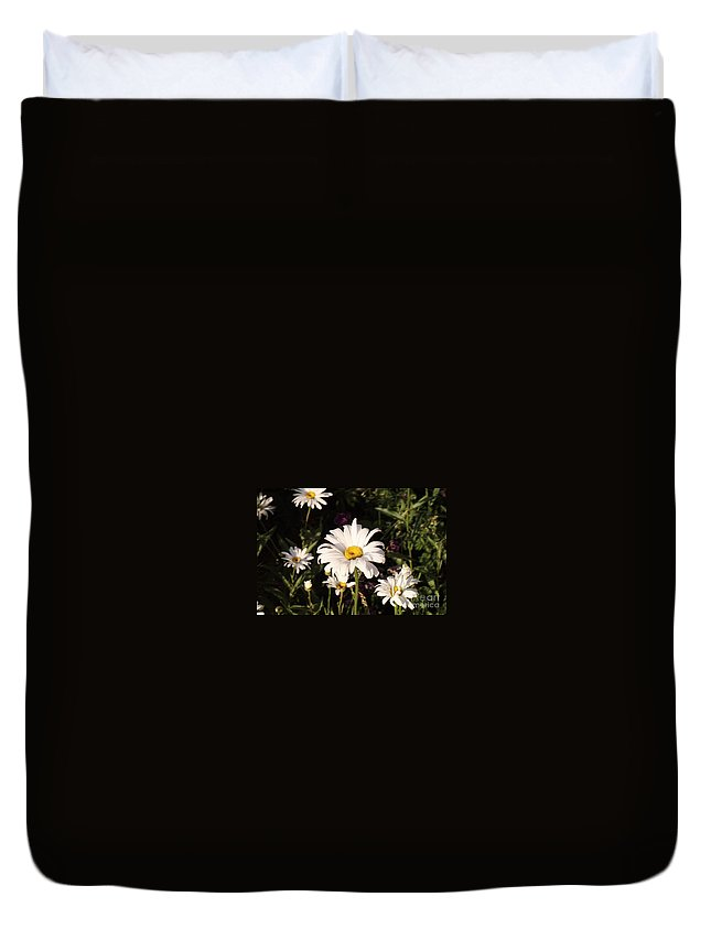 White Duvet Cover featuring the photograph Daisy by Brandi Maher