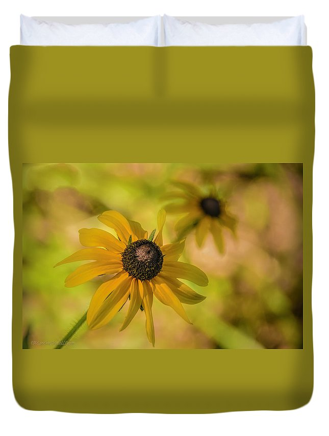 Daisies Duvet Cover featuring the photograph Daisy Daisy Daisy by LeeAnn McLaneGoetz McLaneGoetzStudioLLCcom