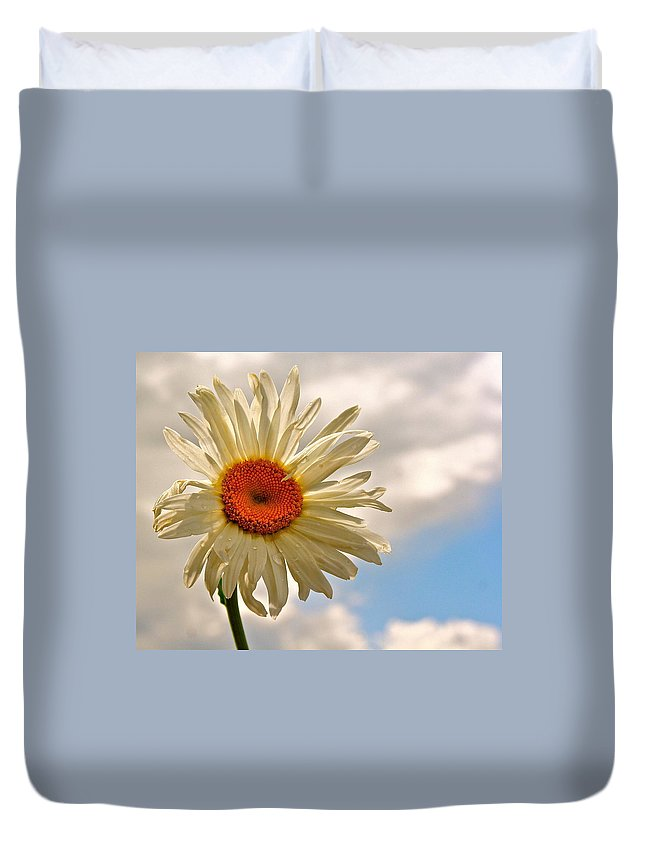Daisy Duvet Cover featuring the photograph Daisy Day by Jill Myers