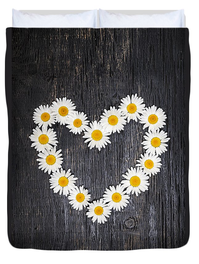 Daisy Duvet Cover featuring the photograph Daisy Heart On Dark Wood by Elena Elisseeva
