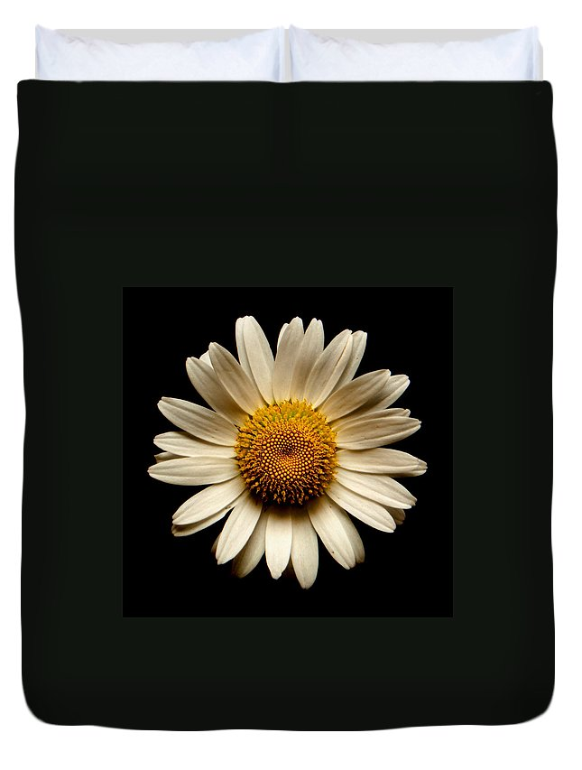 Daisies Are Not Flowers Duvet Cover featuring the photograph Daisy On Black Square by Weston Westmoreland