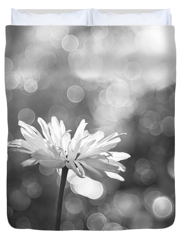Rain Duvet Cover featuring the photograph Daisy Rain by Theresa Tahara