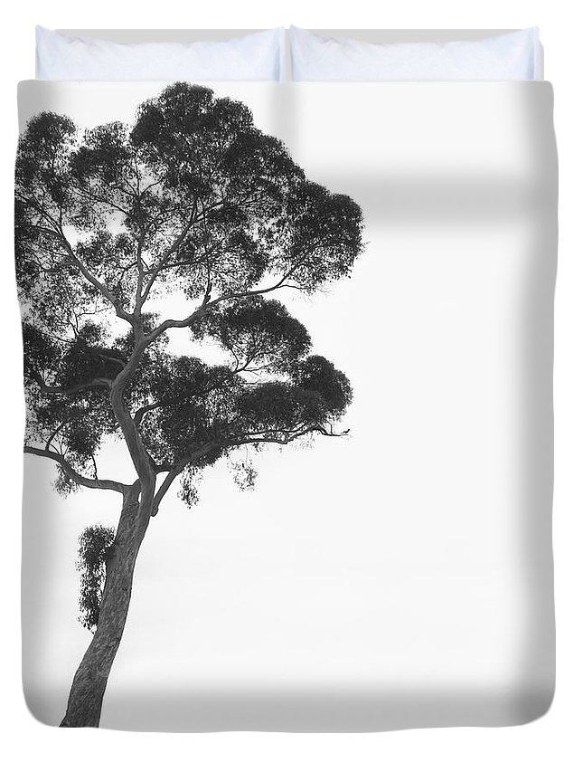 Bird And Cat Duvet Cover featuring the photograph Damn Missed Again by Mike McGlothlen