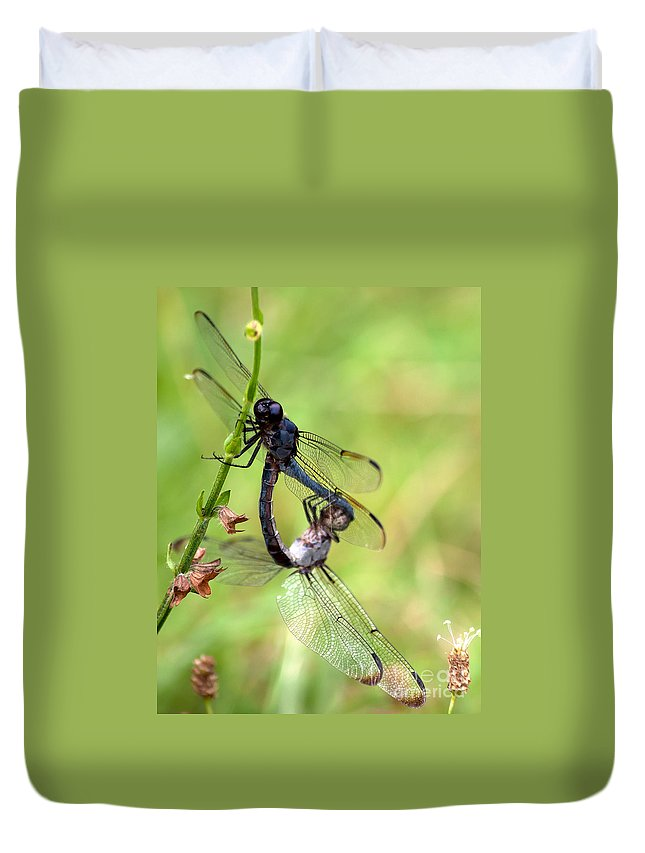 Dragonfly Duvet Cover featuring the photograph Dance Of The Dragonfliesd by Photos By Cassandra