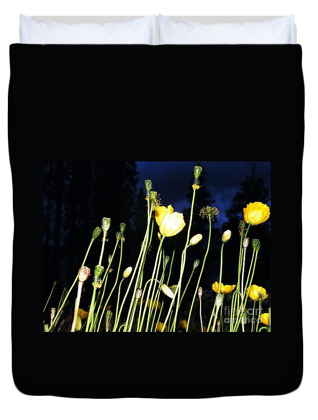 Dancing Duvet Cover featuring the photograph Dancing In The Dark by Brian Boyle