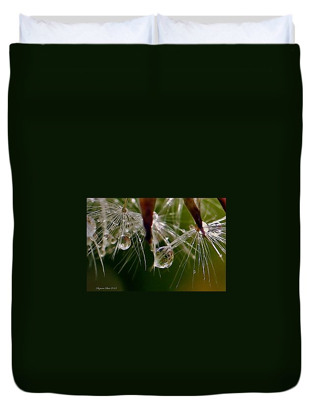 Photography By Suzanne Stout Duvet Cover featuring the photograph Dandelion Droplets by Suzanne Stout
