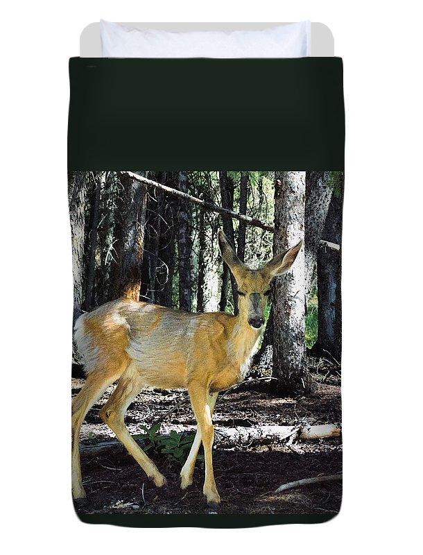 Deer Duvet Cover featuring the digital art Dappled In Light by Jo-Anne Gazo-McKim