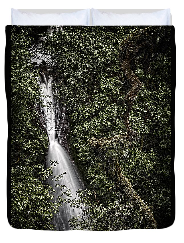 Dark And Twisted Duvet Cover featuring the photograph Dark And Twisted by Wes and Dotty Weber