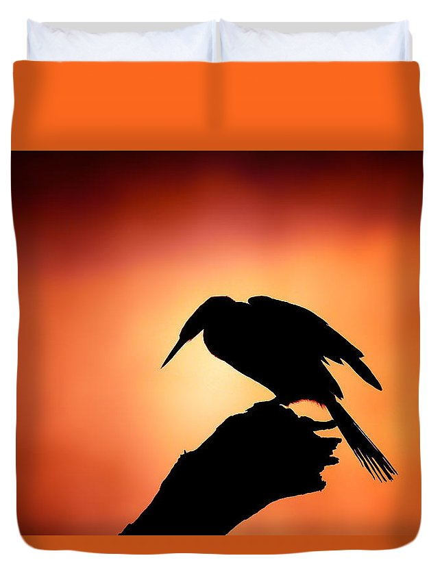 Darter Duvet Cover featuring the photograph Darter Silhouette With Misty Sunrise by Johan Swanepoel