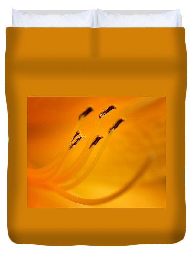 Daylily Duvet Cover featuring the photograph Daylily Closeup by Nikolyn McDonald