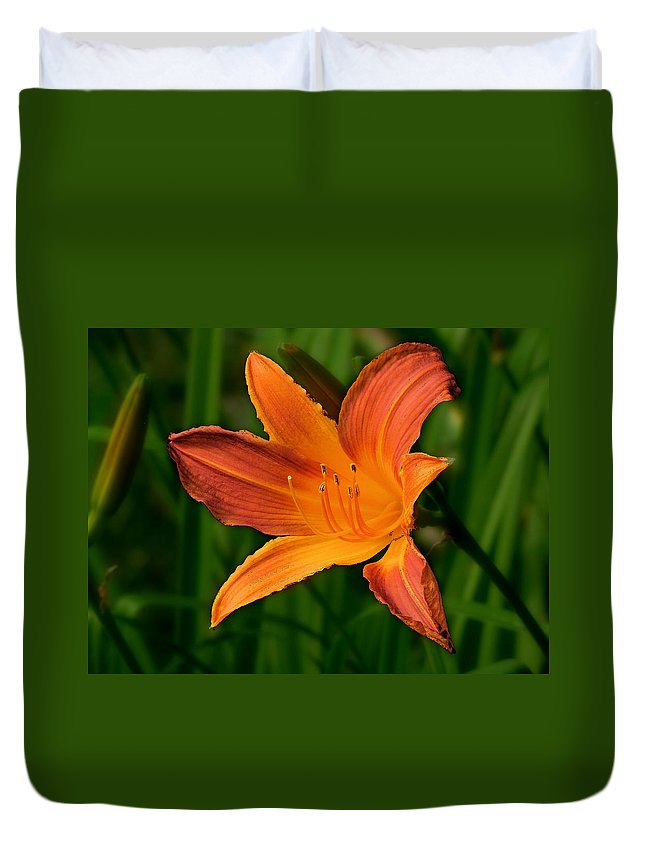 Daylily Duvet Cover featuring the photograph Daylily II by C H Apperson
