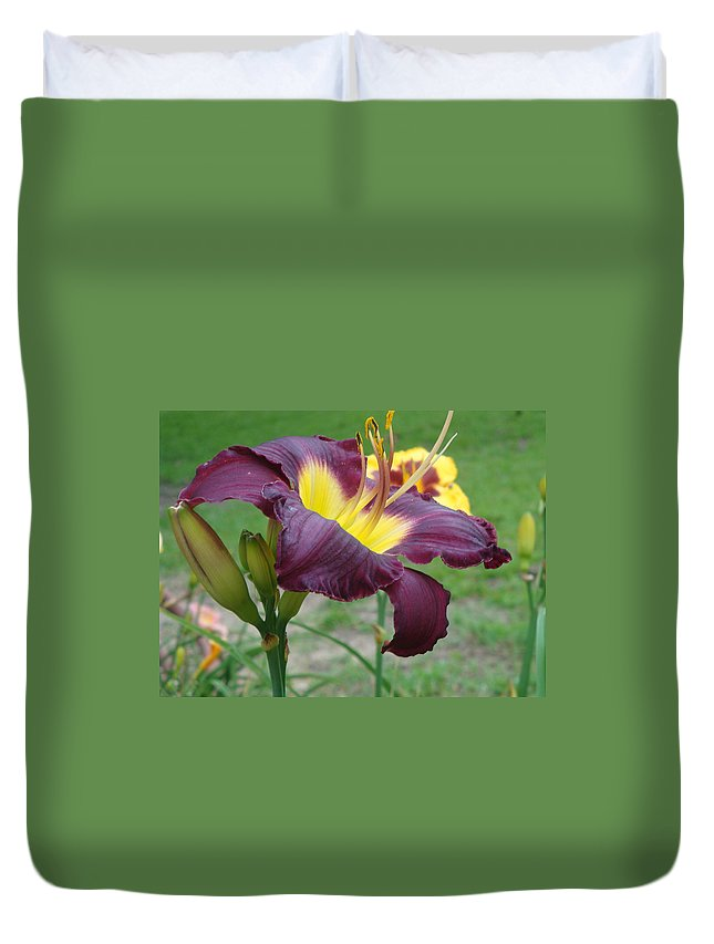 Daylily Duvet Cover featuring the photograph Daylily Study I by Jean Blackmer