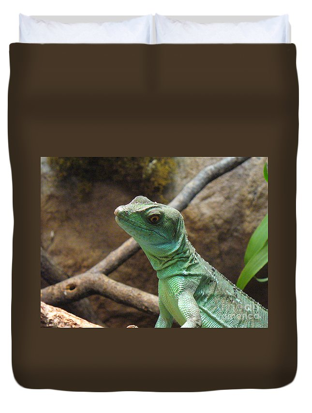 Reptile Duvet Cover featuring the photograph Dazed And Confused by Lingfai Leung