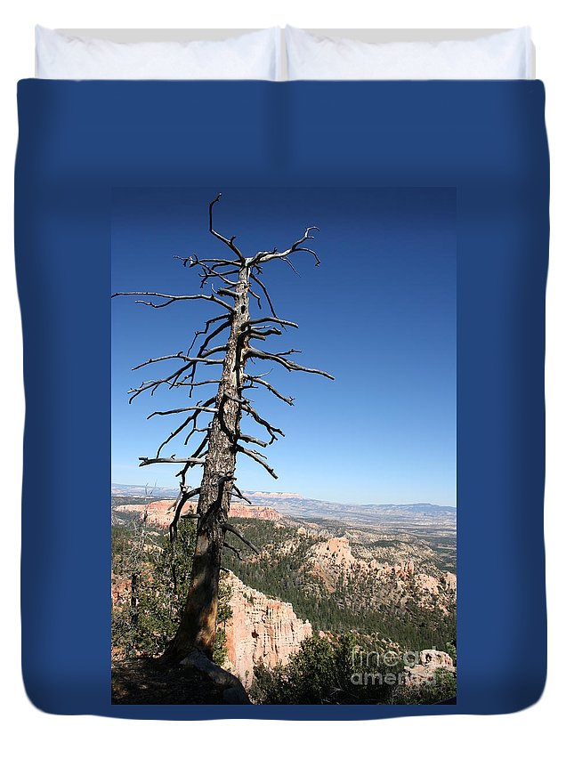 Tree Duvet Cover featuring the photograph Dead Tree At Bryce Canyon Overlook by Christiane Schulze Art And Photography