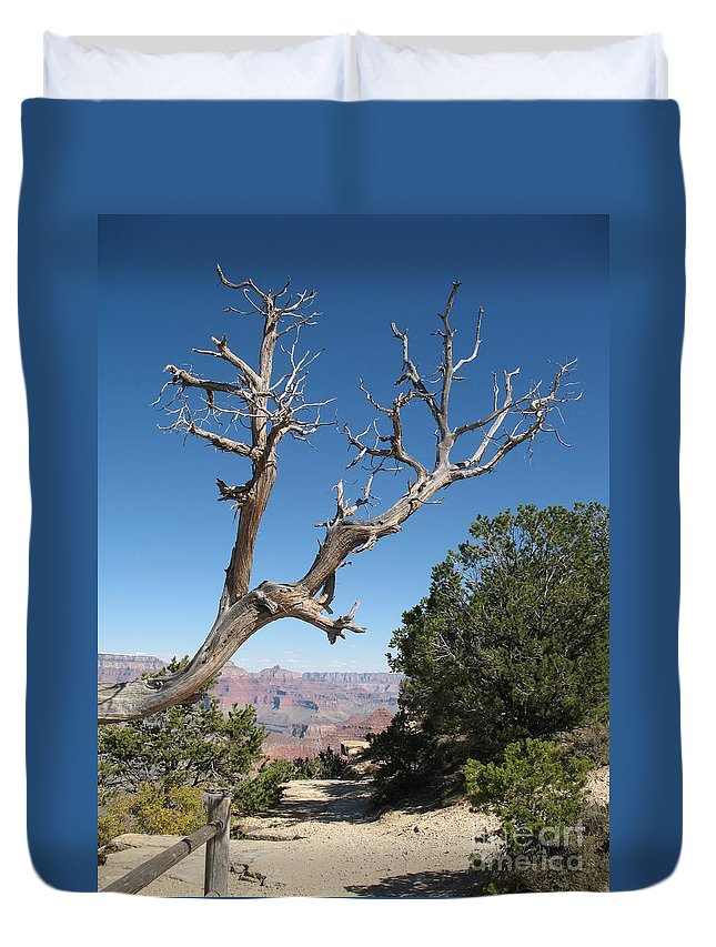 Trees Duvet Cover featuring the photograph Dead Tree At Grand Canyon South Rim by Christiane Schulze Art And Photography