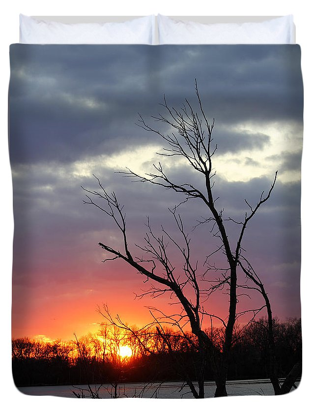Tree Duvet Cover featuring the photograph Dead Tree At Sunset by Lori Tordsen