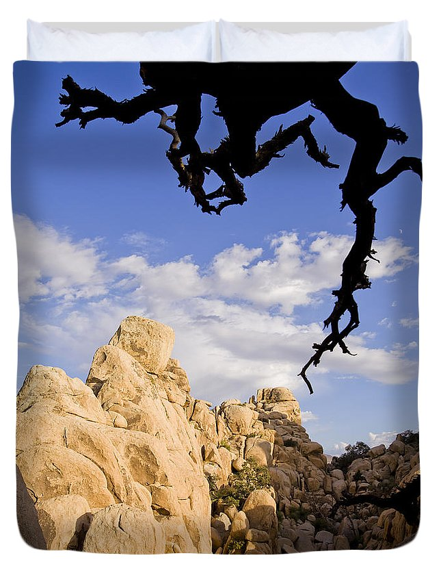 Dead Duvet Cover featuring the photograph Dead Tree Limb Hanging Over Rocky Landscape In The Mojave Desert by B Christopher