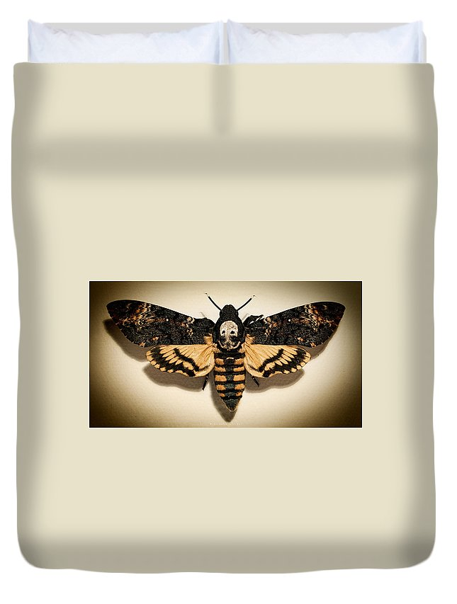 Death's-head Hawkmoth Duvet Cover featuring the photograph Deaths Head Hawk Moth Lomo by Weston Westmoreland
