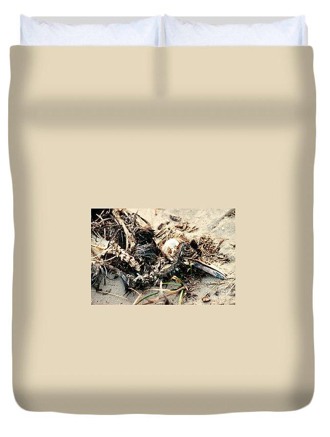 Animal Duvet Cover featuring the photograph Decomposing Dead Bird by Stephan Pietzko
