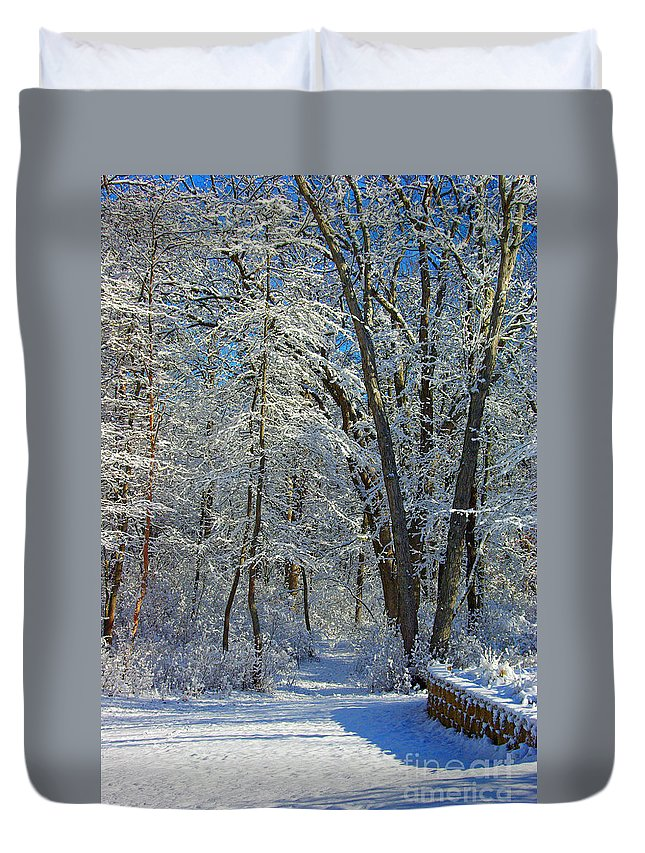 New Jersey Duvet Cover featuring the photograph Deep Freeze by Marian DeSalvo-Rodgers