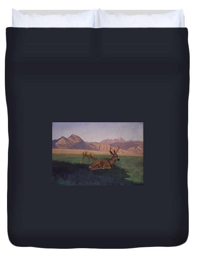 Albert Bierstadt Duvet Cover featuring the painting Deer by Albert Bierstadt