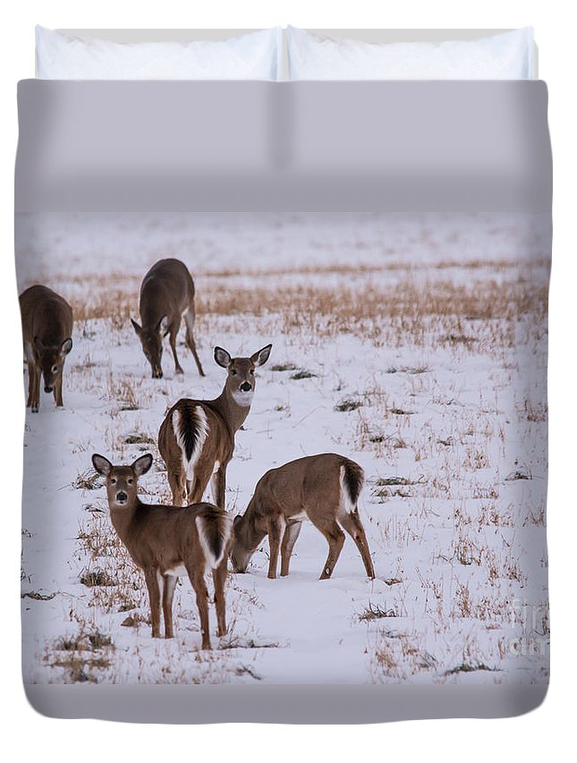 Duvet Cover featuring the photograph Deer At Dusk by Cheryl Baxter