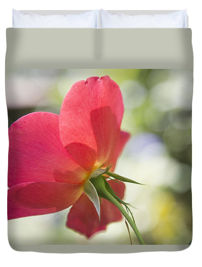 Rose Duvet Cover featuring the photograph Delicacy by Belinda Greb