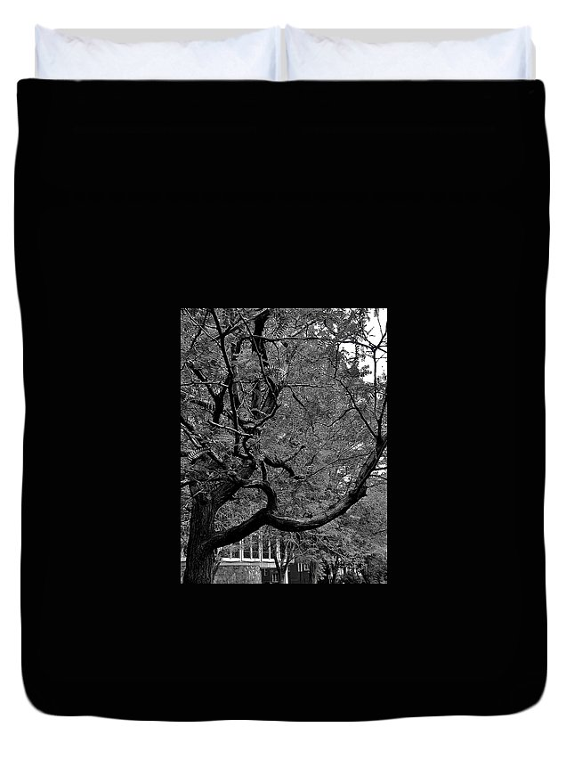 Branches Duvet Cover featuring the photograph Denver Tree Fx by Joseph Yarbrough