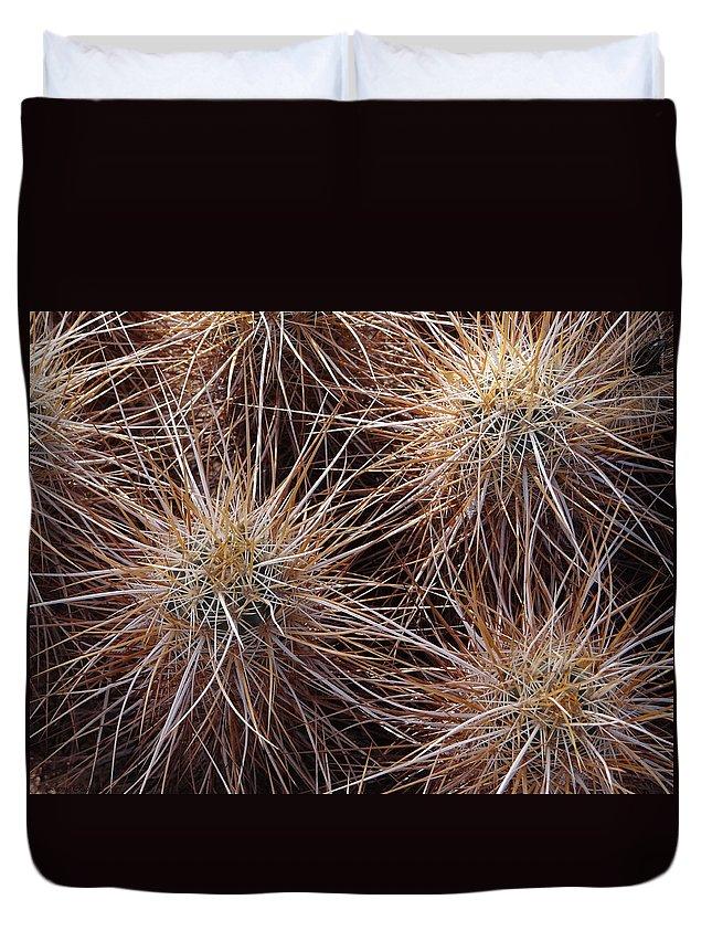 Cactus Duvet Cover featuring the photograph Desert Beauty by Jamie Ramirez