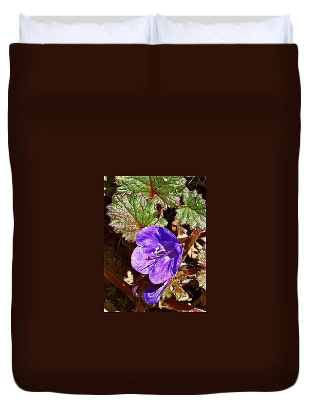 Desert Bell In Tucson Desert Museum In Sonoran Desert Duvet Cover featuring the photograph Desert Bell In Tucson Desert Museum In Sonoran Desert-arizona  by Ruth Hager