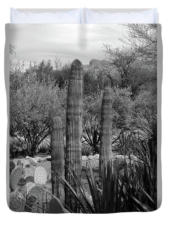 Desert Duvet Cover featuring the photograph Desert Cactus by Kathleen Struckle