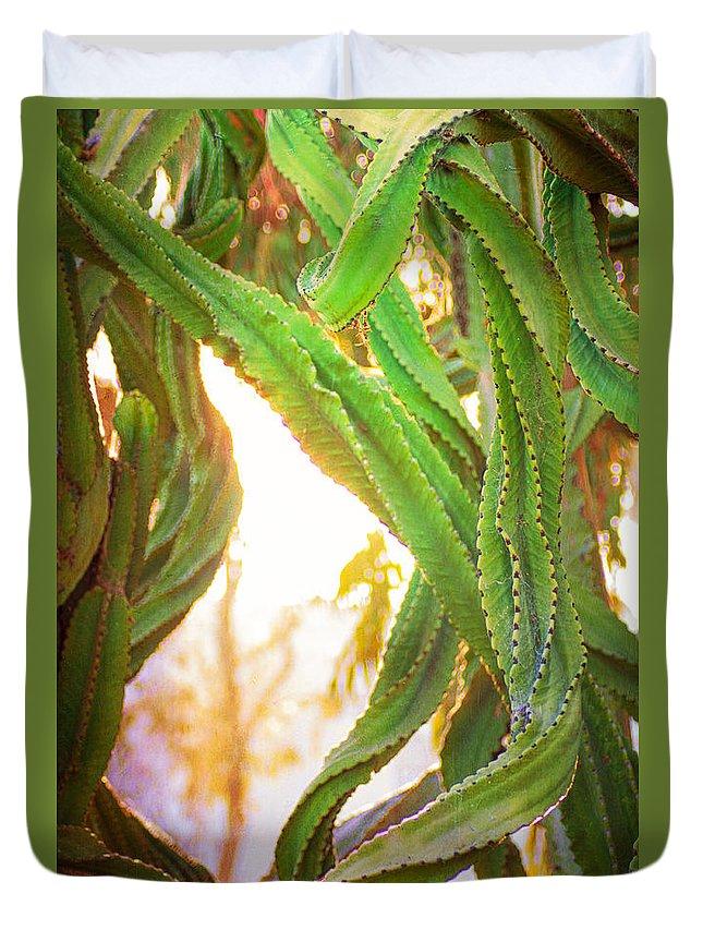 Desert Duvet Cover featuring the photograph Desert Heat by Roselynne Broussard