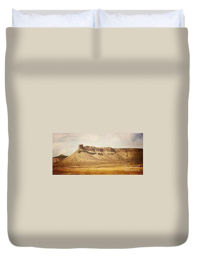 Desert Duvet Cover featuring the photograph Desert Landscape by Pam Holdsworth