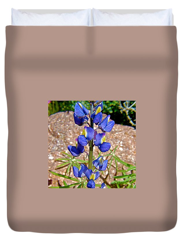 Desert Lupine In Arizona Duvet Cover featuring the photograph Desert Lupine-arizona  by Ruth Hager
