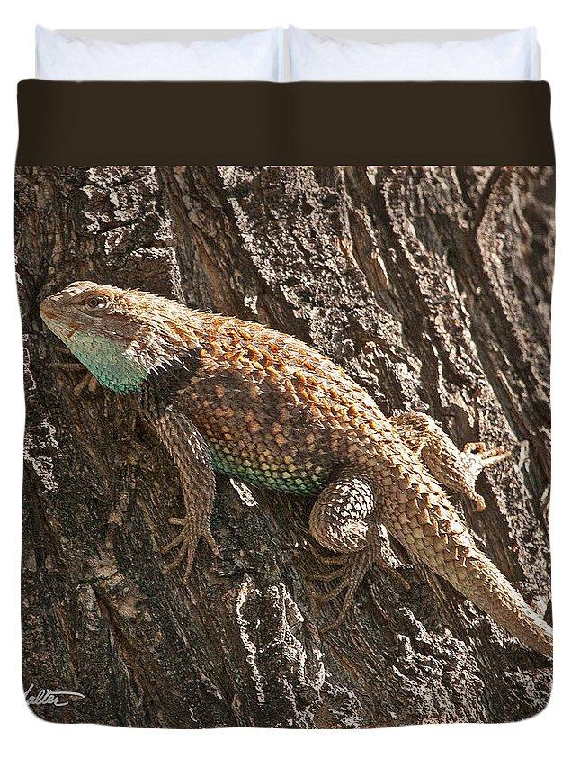 Wildlife Duvet Cover featuring the photograph Desert Spiny Lizard by Stephanie Salter