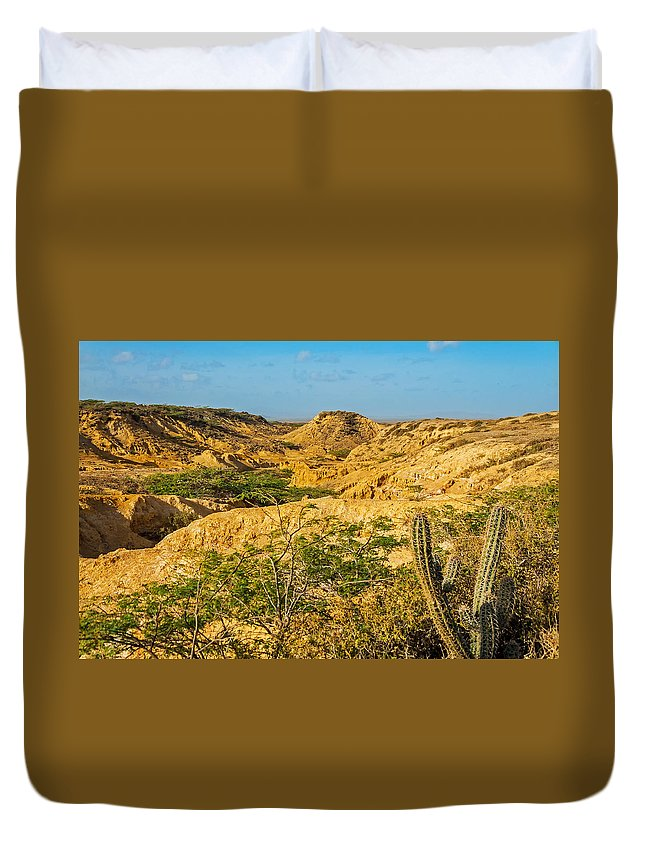 Desert Duvet Cover featuring the photograph Desolate Desert Landscape by Jess Kraft