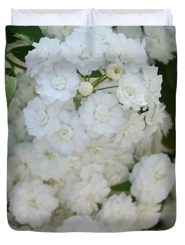 Shrub Duvet Cover featuring the photograph Deutzia Pure And Simple by Taiche Acrylic Art