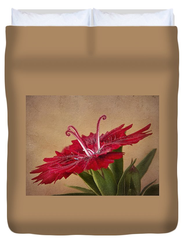 Flower Duvet Cover featuring the photograph Dianthus by David and Carol Kelly