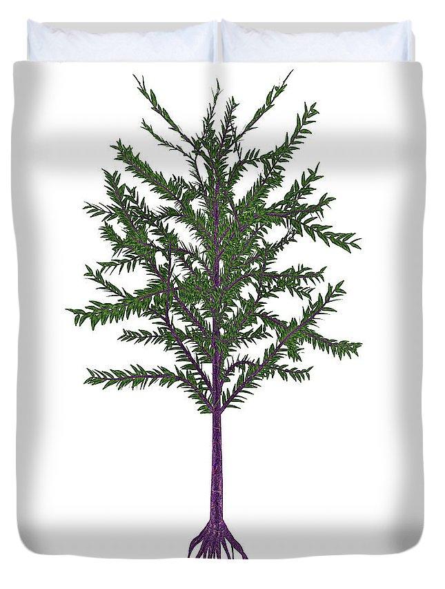 Tree Duvet Cover featuring the photograph Dicroidium Prehistoric Seed Plant by Elena Duvernay