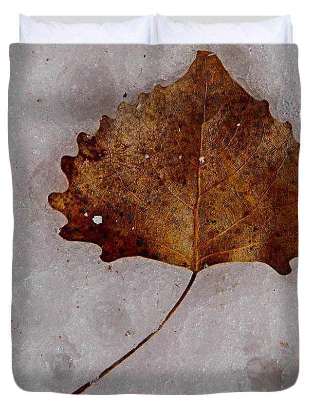 Foliage Duvet Cover featuring the photograph Dimples by Chris Berry