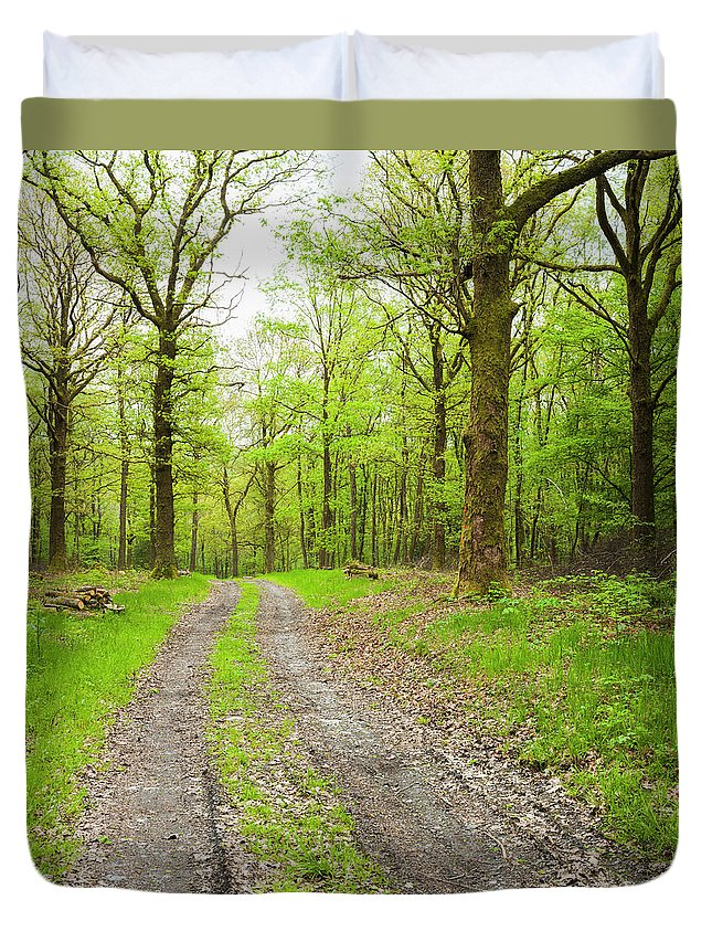 Scenics Duvet Cover featuring the photograph Dirt Road Surrounded By Trees In by Mike Kemp Images