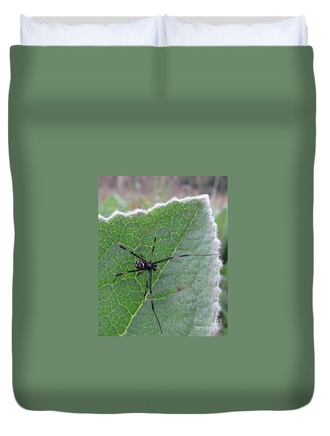 Maryland Black Widow Deadly North American Spiders Diurnal Black Widow Images Chesapeake Bay Region Black Widow Spider Images Forest Creatures Venomous Creatures Killer Critters Black Red Yellow Arachnid Creepy Critters Duvet Cover featuring the photograph Diurnal Doom by Joshua Bales