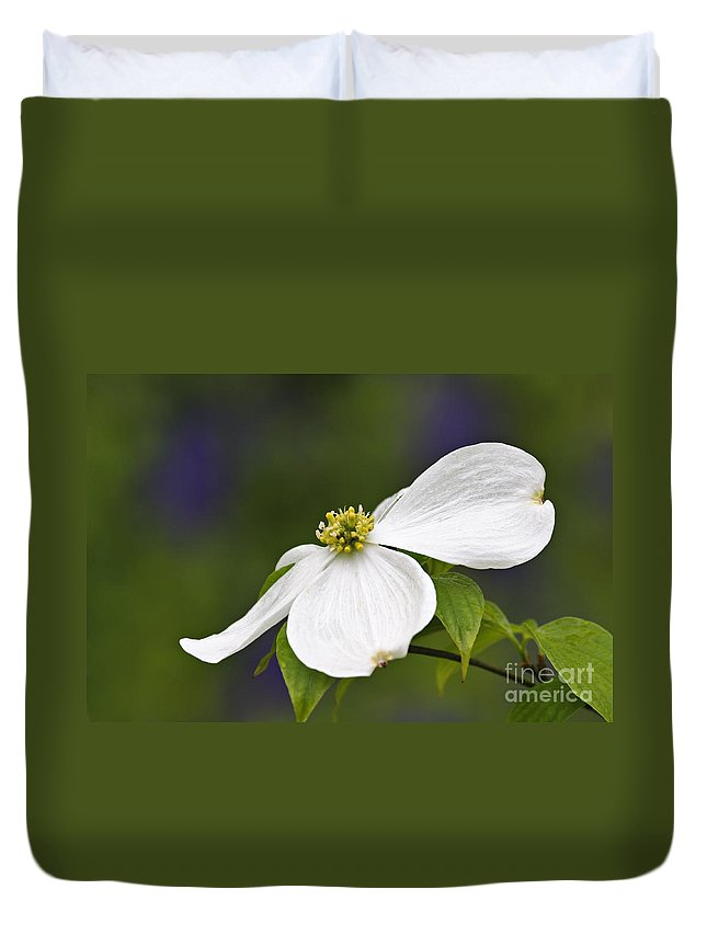 Eastern Duvet Cover featuring the photograph Dogwood Blossom - D001797 by Daniel Dempster